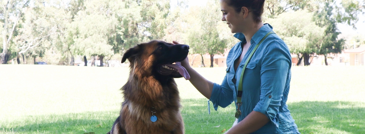 Amy from Happy Dogs Walks and Training